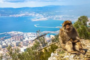 Daytrip to Gibraltar