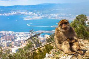Excursión desde Sevilla a Gibraltar