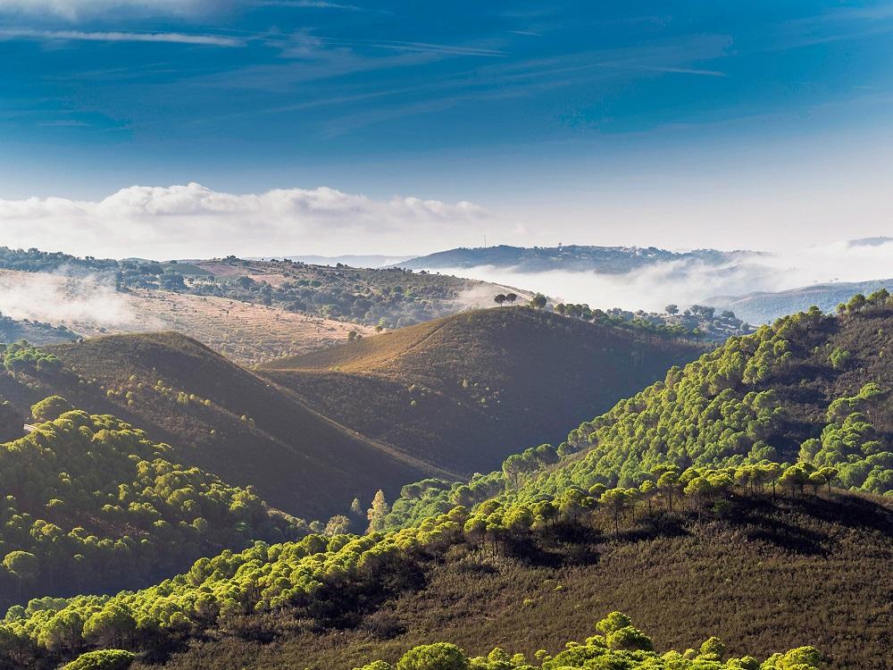 Wandern in der Sierra de Aracena und Besichtigung der Gruta de las Maravillas, Panorama